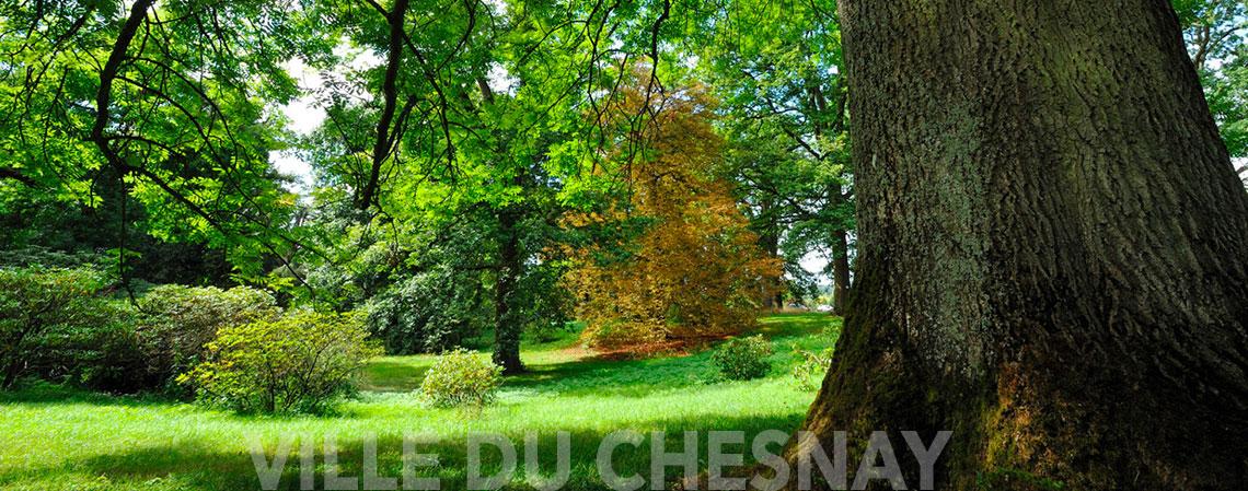 L'arboretum de Chèvreloup