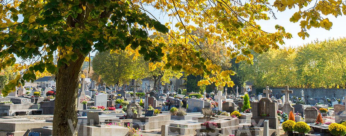 Au cimetière du Chesnay