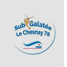 Plongée Sous Marine, Hockey Subaquatique et Apnée